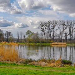 Весна на озері