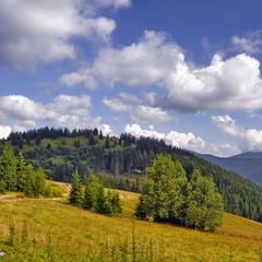 Гори, небо і ліси...