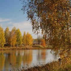 Ніжна осінь