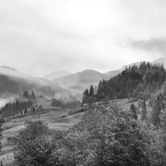 Карпати, осінні Карпати, лісів і туманів краса...