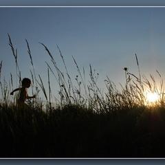 Бігом за сонцем