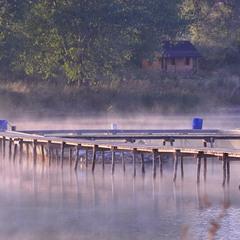 Дихає теплим туманом ставок...
