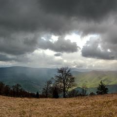 Справа сонце, зліва дощ