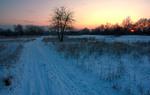 Одинока хода морозними сумерками