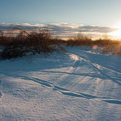 Яскравий день на чудових зимових просторах