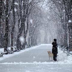 Зимова замальовка з південної Пальміри