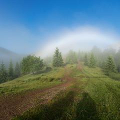 Крізь тумани у Карпати