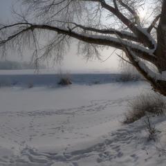 Про февральские прогулки по речке в -20 градусов С.