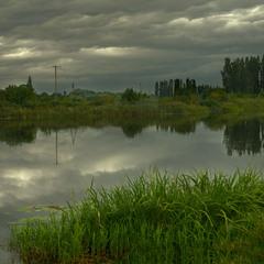 Про забытые столбы,хмурое небо и пирамидальные тополя  на лугу,у речки...