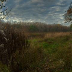 Про тропинку в лесу,к осеннему озеру...