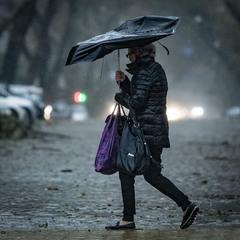 Кормить семью в любую погоду