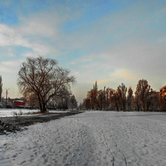 Морозное утро января