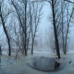 Туманная январская грусть...