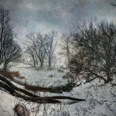Hаброски зимней непогоды