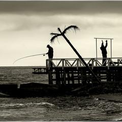О, Господи, ну объясни ты ему, что тут рыбы нет!!!