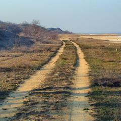 Дорога в никуда. Экологическая катастрофа.