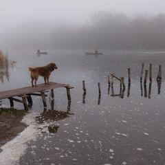 Двое в лодках... без собаки.