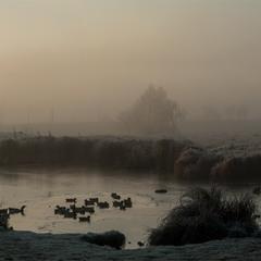 Ранкова панорама, листопад