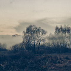Пізня осінь, ранковий  туман