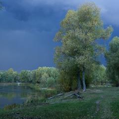 Світло перед дощем