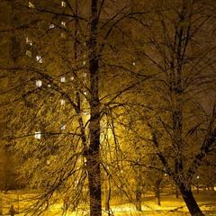 Зимовий вечір у місті