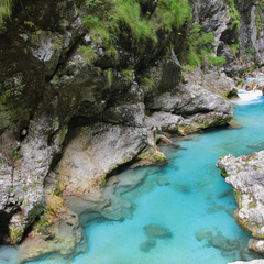 Каньон реки Толминка