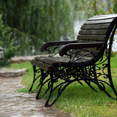 Дождь и скамейка