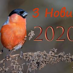 З Новим 2020!