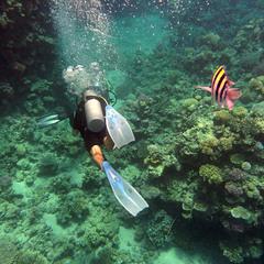 На аква-фото-охоту:)