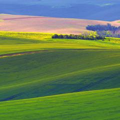 Південна Моравія