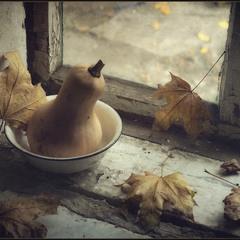 Осенний этюд..