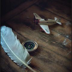 Летят перелетные птицы..