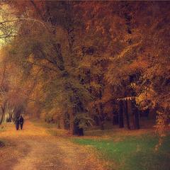 Прогулка по парку..