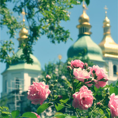 Пора цветения..