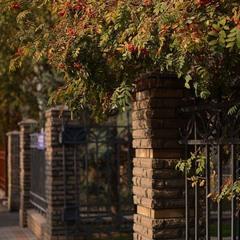 Осени приятный уголок..