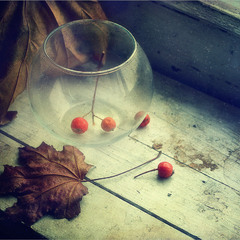 Осени последний день..