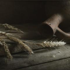Хлеб наш насущный даждь нам днесь..