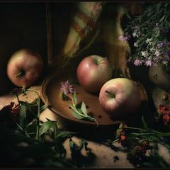 Такие вот, яблочки..
