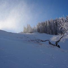 Гра сонця і снігу