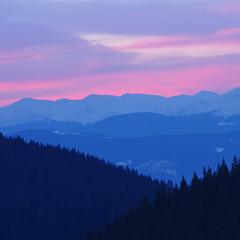 Чорногора в рожевих тонах