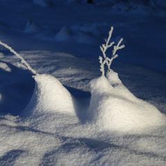 Олені та копиця снігу