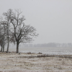 про погоду на селі
