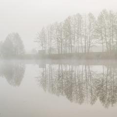 "Из серии "" В тумане"""