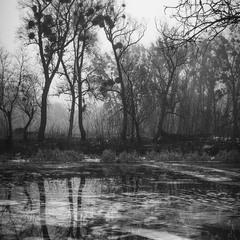 Пейзаж со льдом