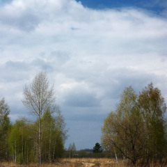 Дорога в Срезнево