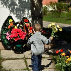 цветы героям