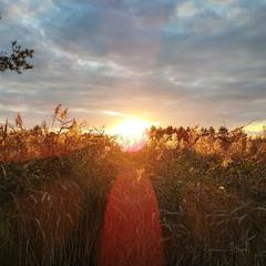 Закат в Олешках