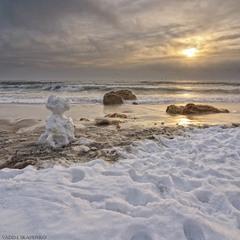 Снеговик и море