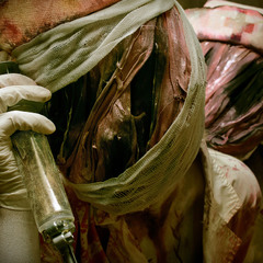 "Series: ""Silent Hill"""