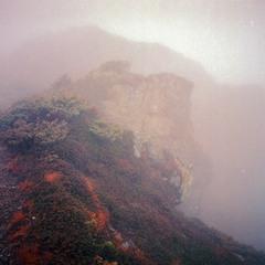 Мюха в тумані